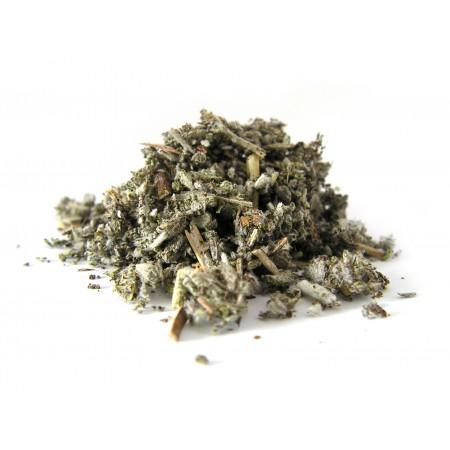 Szałwia lekarska - Salvia officinalis 50 g